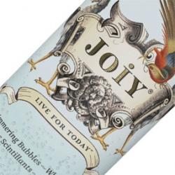 JOIY CANS 24 x 250ml