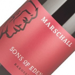 SONS OF EDEN MARSCHALL SHIRAZ 2019 X 6